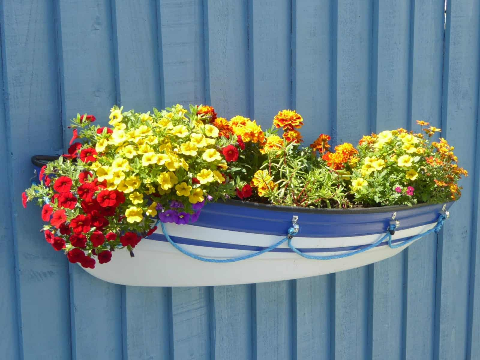 Blue band customers Boat Planter
